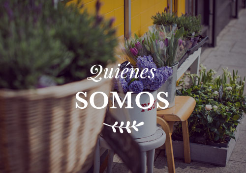 banner_quienesomos_botanica24