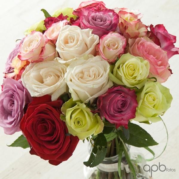 rosas_color_botanica24